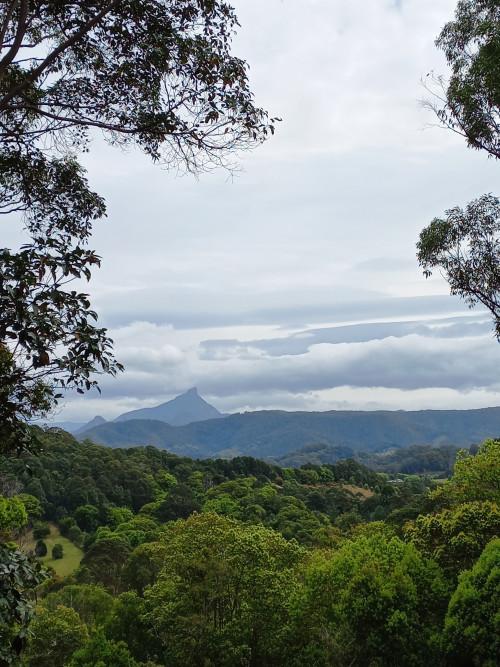 Mt Wollumbin